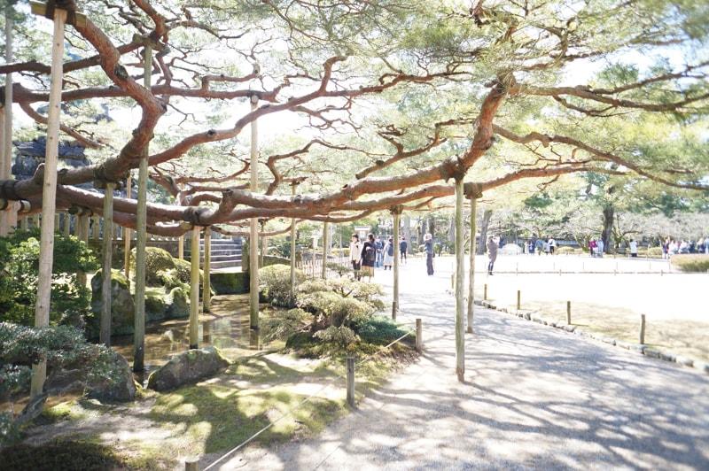 Kanazawa 2nights spot 12