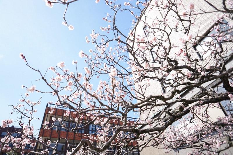 Kanazawa 2nights spot 6