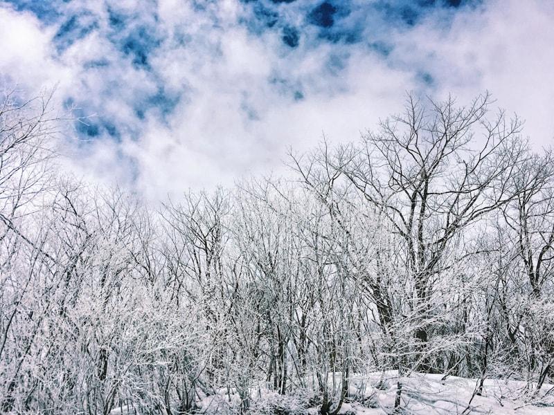 Snow2017 18 46