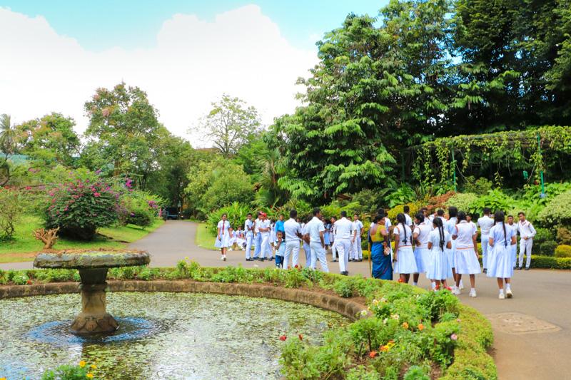 Srilanka kandy 12