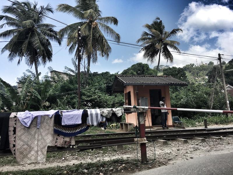 Srilanka solo travel 10