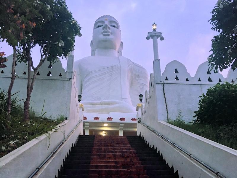 Srilanka solo travel 8