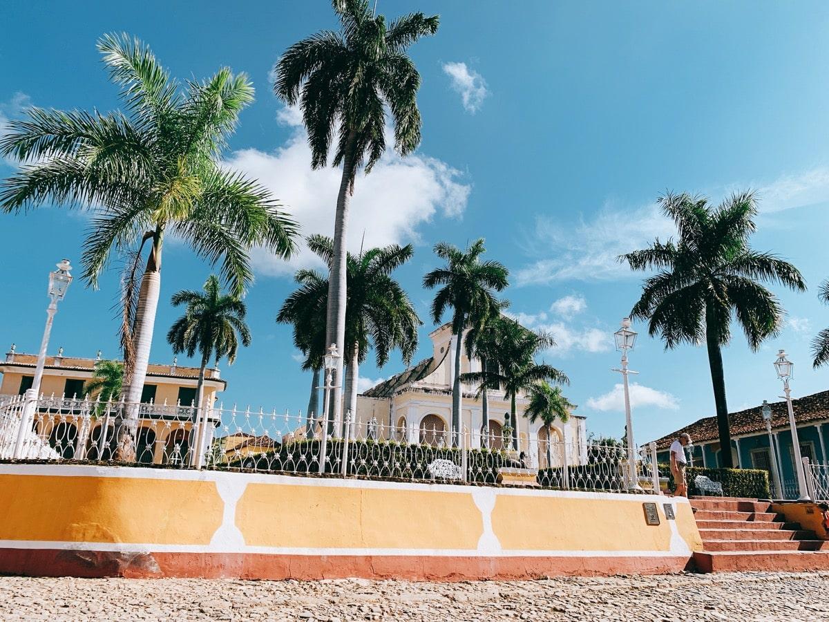 Trinidad 35広場のヤシの木