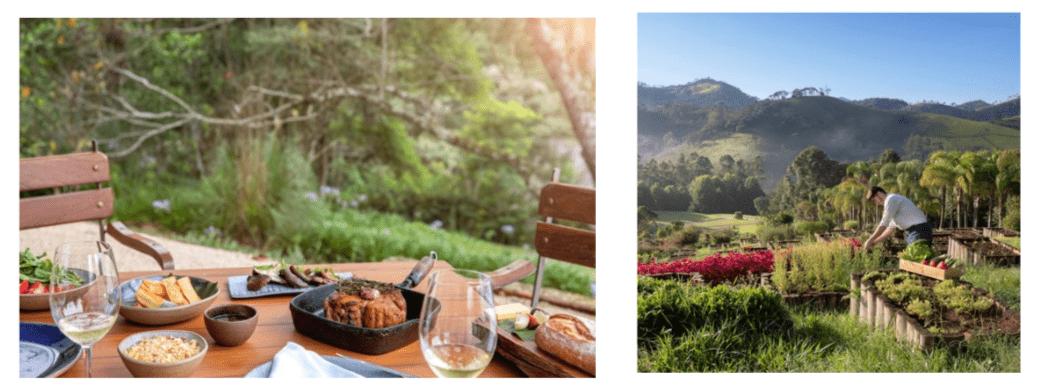 sustainable-luxury-resort-3_Six Senses Botanique