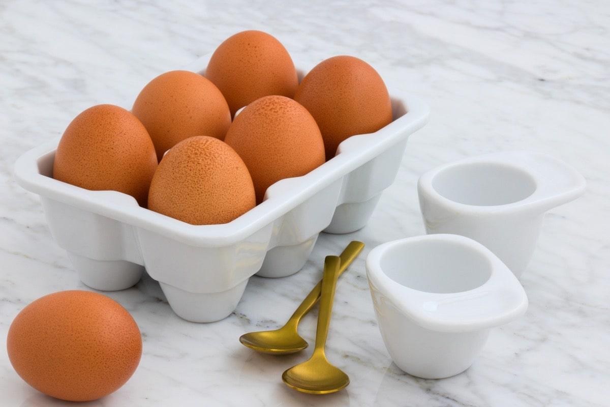 Milk egg longlife 1卵